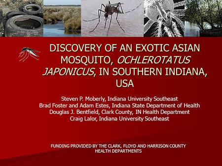 DISCOVERY OF AN EXOTIC ASIAN MOSQUITO, OCHLEROTATUS JAPONICUS, IN SOUTHERN INDIANA, USA FUNDING PROVIDED BY THE CLARK, FLOYD AND HARRISON COUNTY HEALTH.