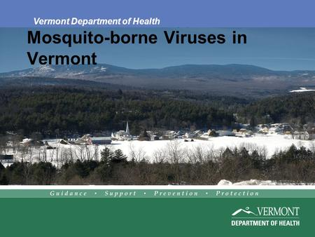Mosquito-borne Viruses in Vermont