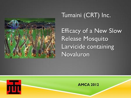 Tumaini (CRT) Inc. Efficacy of a New Slow Release Mosquito Larvicide containing Novaluron.