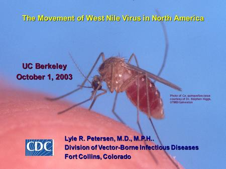 The Movement of West Nile Virus in North America UC Berkeley October 1, 2003 Lyle R. Petersen, M.D., M.P.H.. Division of Vector-Borne Infectious Diseases.