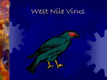 West Nile Virus Timeline  1937  First Case reported  1950  Virus studied in Egypt  1957  Outbreak in Israel  1960  Equine cases  1999  Appeared.