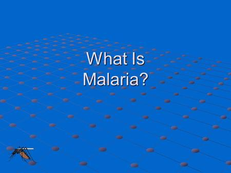 What Is Malaria?.