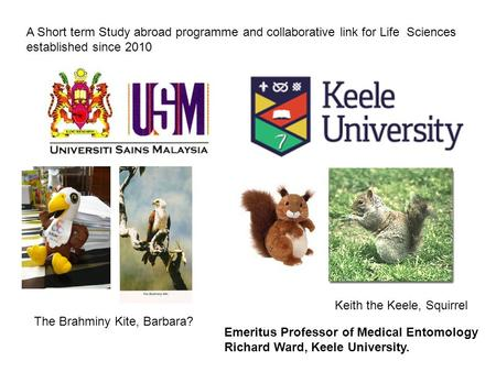 A Short term Study abroad programme and collaborative link for Life Sciences established since 2010 Keith the Keele, Squirrel The Brahminy Kite, Barbara?