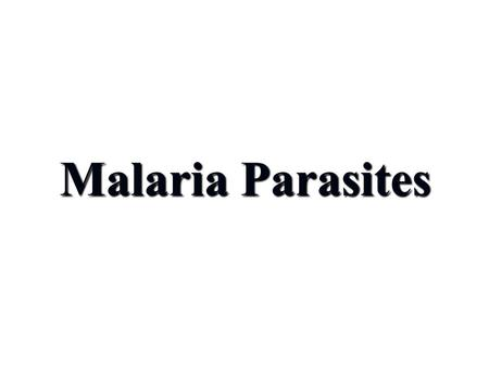 Malaria Parasites Dr. Gamal Allam. Learning outcomes By the end of the lecture, you should be able to: 1- Define and classify malaria parasites. 2- Mention.