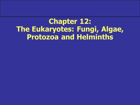 Chapter 12: The Eukaryotes: Fungi, Algae, Protozoa and Helminths.