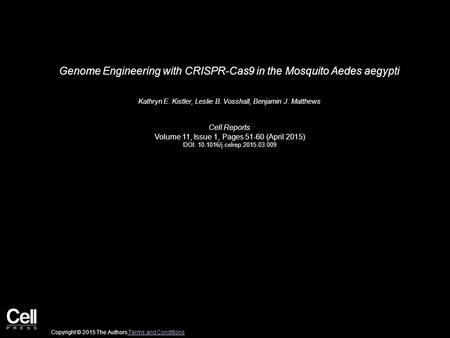 Genome Engineering with CRISPR-Cas9 in the Mosquito Aedes aegypti Kathryn E. Kistler, Leslie B. Vosshall, Benjamin J. Matthews Cell Reports Volume 11,