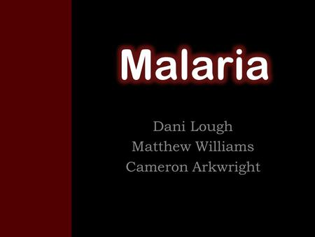 "Dani Lough Matthew Williams Cameron Arkwright. Background The word Malaria comes from ""mala"" meaning bad and ""aria"" meaning bad air. It's an Italian word."