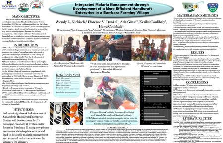 Integrated Malaria Management through Development of a More Efficient Handicraft Enterprise in a Bambara Farming Village Villagers (Hawa Coulibaly, Bourama.