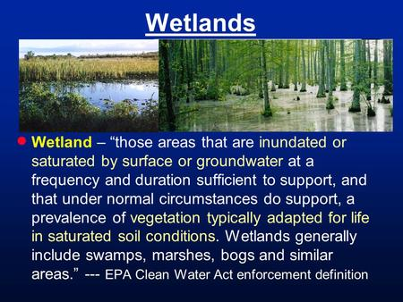 "Wetlands  Wetland – ""those areas that are inundated or saturated by surface or groundwater at a frequency and duration sufficient to support, and that."