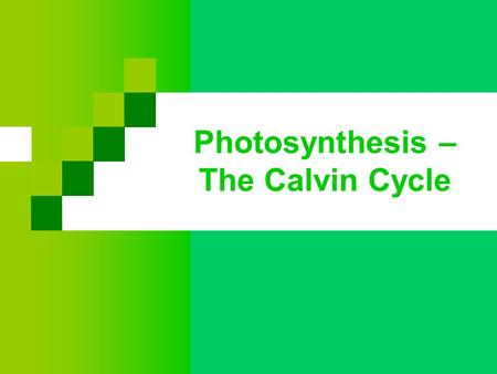 Photosynthesis – The Calvin Cycle. Calvin Cycle Incorporates atmospheric CO 2 and uses ATP/NADPH from light reaction Named for Dr. Melvin Calvin He.