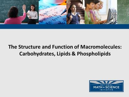 The Structure and Function of Macromolecules: Carbohydrates, Lipids & Phospholipids.
