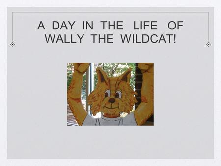 A DAY IN THE LIFE OF WALLY THE WILDCAT!. WALLY ARRIVES TO CLASS LATE. WALLY NEEDS TO STOP IN THE OFFICE TO GET A PASS. SINCE WALLY IS ONLY 4 MINUTES LATE.