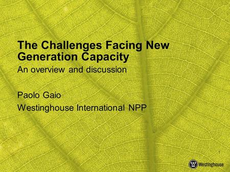 1 The Challenges Facing New Generation Capacity An overview and discussion Paolo Gaio Westinghouse International NPP.