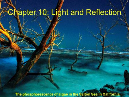 Chapter 10: Light and Reflection The phosphorescence of algae in the Salton Sea in California.