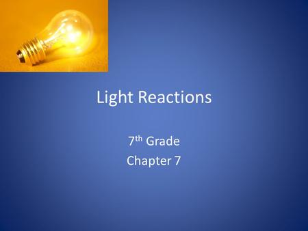 Light Reactions 7 th Grade Chapter 7. Colors in the world The color of the objects we see in the natural world is a result of the way objects interact.
