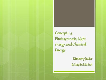 Concept 6.5 Photosynthesis, Light energy, and Chemical Energy Kimberly Javier & Kaylin Malinit.