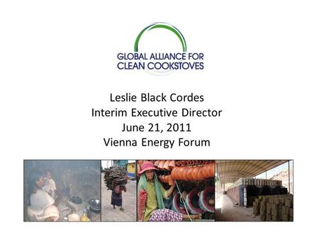 Leslie Black Cordes Interim Executive Director June 21, 2011 Vienna Energy Forum.
