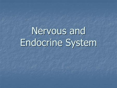 Nervous and Endocrine System Vocabulary Gland – an organ that produces and secretes (releases) hormones Gland – an organ that produces and secretes (releases)
