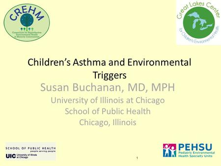 1 Children's Asthma and Environmental Triggers Susan Buchanan, MD, MPH University of Illinois at Chicago School of Public Health Chicago, Illinois.
