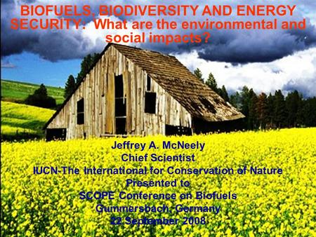 BIOFUELS, BIODIVERSITY AND ENERGY SECURITY: What are the environmental and social impacts? Jeffrey A. McNeely Chief Scientist IUCN-The International for.