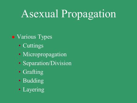 Asexual Propagation l Various Types Cuttings Micropropagation Separation/Division Grafting Budding Layering.