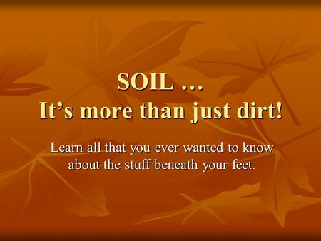 SOIL … It's more than just dirt!