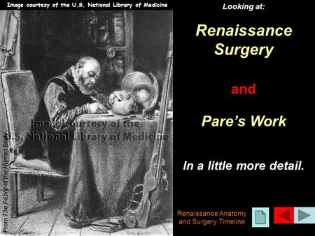 Looking at: Renaissance Surgery and Pare's Work In a little more detail. From The Fabric of the Human Body Renaissance Anatomy and Surgery Timeline Image.