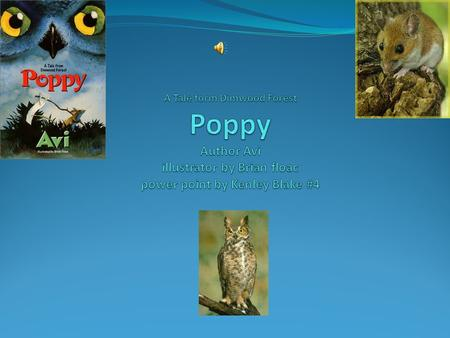 A Tale form Dimwood Forest Poppy Author Avi illustrator by Brian floac power point by Kenley Blake #4.