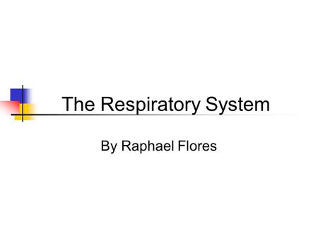 The Respiratory System By Raphael Flores. loading100%