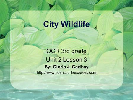 City Wildlife OCR 3rd grade Unit 2 Lesson 3 By: Gloria J. Garibay