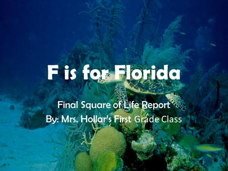 F is for Florida Final Square of Life Report By: Mrs. Hollar's First Grade Class.