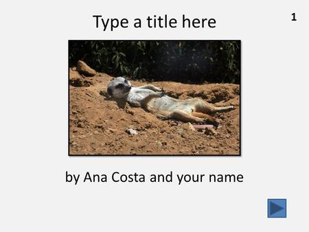1 Type a title here by Ana Costa and your name. 2 What Meerkats Look Like………………………….………pg. 3 How Meerkats Live in the Desert……...………………pg. 7 ………….….……………..………..………………pg.