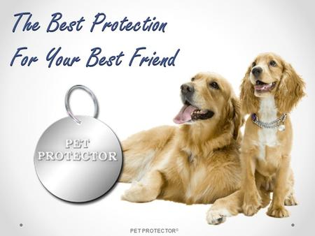 The Best Protection For Your Best Friend PET PROTECTOR®