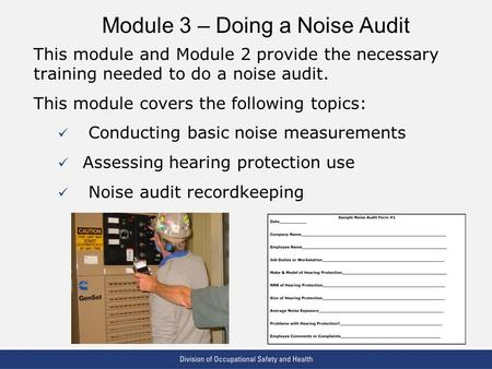 VPP: The Standard of Excellence in Workplace Safety and Health Module 3 – Doing a Noise Audit This module and Module 2 provide the necessary training needed.