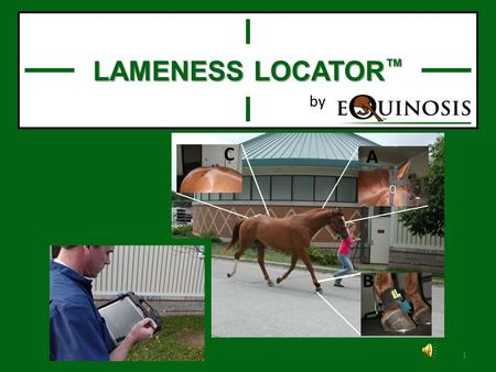 1 LAMENESS LOCATOR ™ by System components 2 3 4.