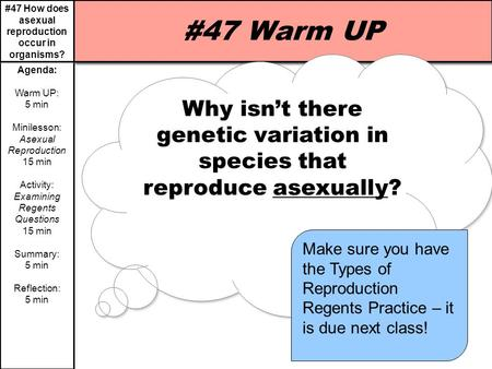 #47 How does asexual reproduction occur in organisms? Agenda: Warm UP: 5 min Minilesson: Asexual Reproduction 15 min Activity: Examining Regents Questions.