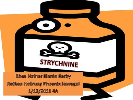 Source STRYCHNINE IS MADE FROM THE BERRIES OF THE PLANT STRYCHNOS NUX VOMICA. THE PLANT IS FOUND IN SOUTHERN ASIA. STRYCHNINE BERRIES ARE FLESHY AND ORANGE.
