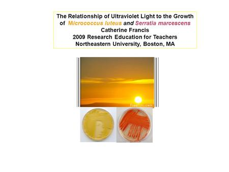 The Relationship of Ultraviolet Light to the Growth of Micrococcus luteus and Serratia marcescens Catherine Francis 2009 Research Education for Teachers.