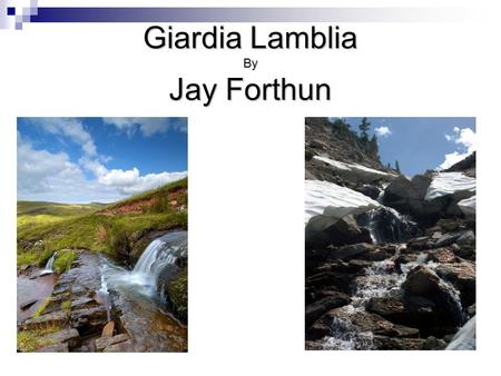Giardia Lamblia By Jay Forthun. Problem Purpose To ensure water treatment is made possible in all livable areas in the world.