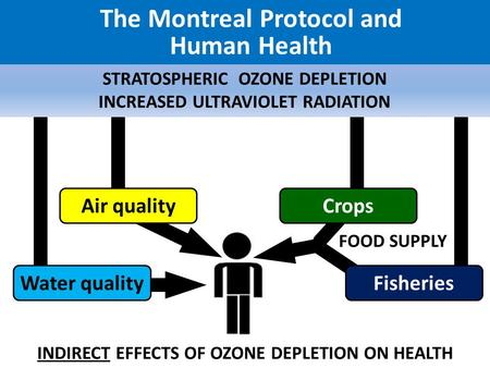 the problem of depleting ozone