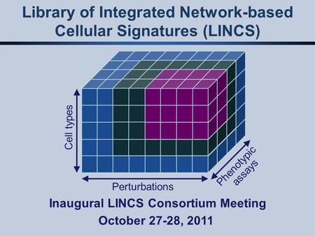 Library of Integrated Network-based Cellular Signatures (LINCS) Perturbations Cell types Phenotypic assays Inaugural LINCS Consortium Meeting October 27-28,