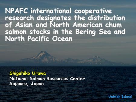 NPAFC international cooperative research designates the distribution of Asian and North American chum salmon stocks in the Bering Sea and North Pacific.