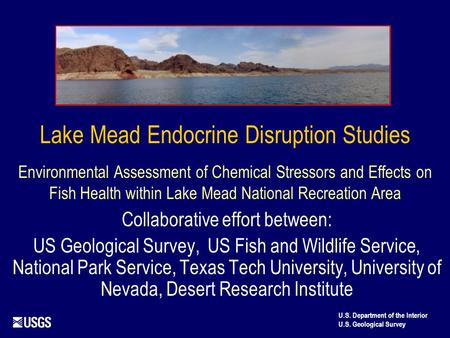 Lake Mead Endocrine Disruption Studies Environmental Assessment of Chemical Stressors and Effects on Fish Health within Lake Mead National Recreation Area.