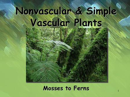 Nonvascular & Simple Vascular Plants