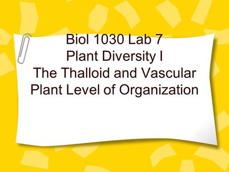 Biol 1030 Lab 7 Plant Diversity I The Thalloid and Vascular Plant Level of Organization.