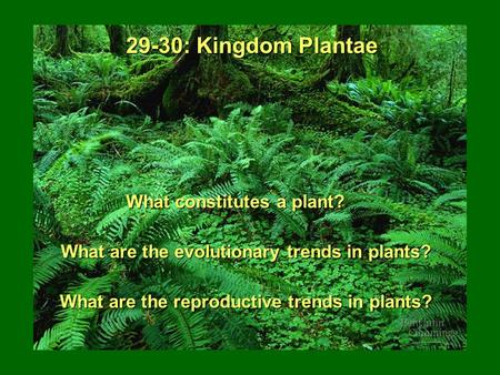 29-30: Kingdom Plantae What constitutes a plant?