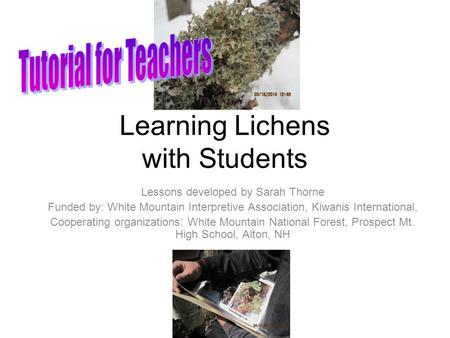 Learning Lichens with Students Lessons developed by Sarah Thorne Funded by: White Mountain Interpretive Association, Kiwanis International, Cooperating.