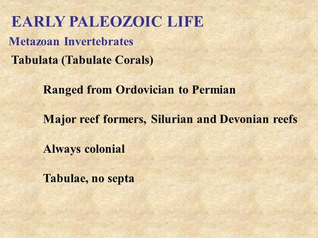 EARLY PALEOZOIC LIFE Metazoan Invertebrates Tabulata (Tabulate Corals) Ranged from Ordovician to Permian Major reef formers, Silurian and Devonian reefs.