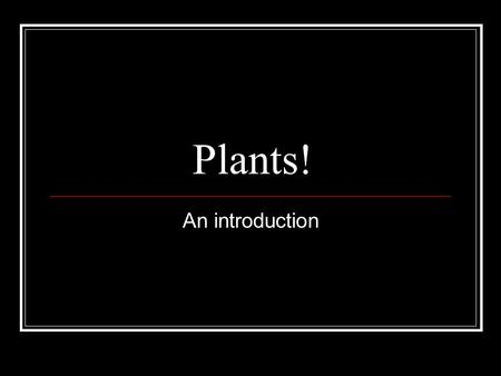 Plants! An introduction.