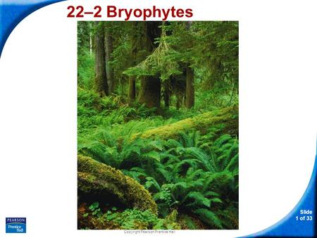 Slide 1 of 33 Copyright Pearson Prentice Hall 22–2 Bryophytes.